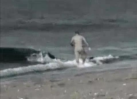 Homem é atacado por baleia!