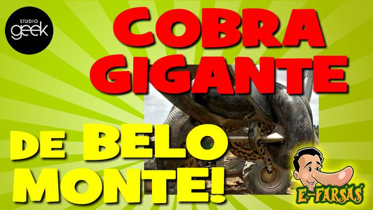 A verdade sobre a cobra gigante encontrada em Belo Monte!